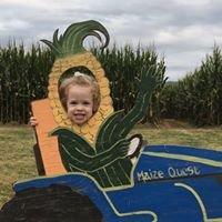 Maize Quest at Bridgemont Farm