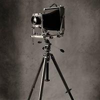 Lindsay Milgate Photographers