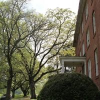 The Patterson School Foundation