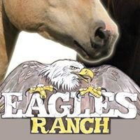 the Eagles Ranch, American Paint Horses