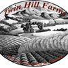 Twin Hill Farms LLC