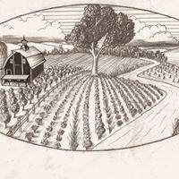 Hackberry Hollow Farms