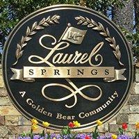 Laurel Springs Neighborhood