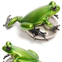 R Frogs Gallery