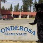 Ponderosa Elementary PTO