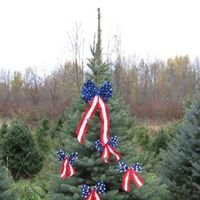 Romagnoli's Christmas Tree Farm