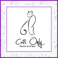 Cats Only Resort and Spa