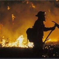 Paducah Fire Department