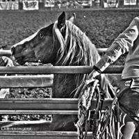 Daniel Beard Rodeo
