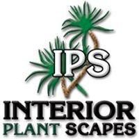 Interior Plant Scapes