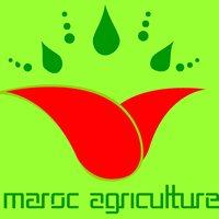 Maroc Agriculture