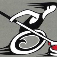 Edmonton Wheelchair Curling
