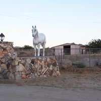 Yucca Valley Equestrian Center