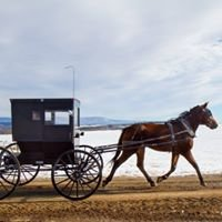 Mennonite Country Real Estate News