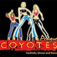 Coyotes Prague