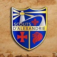 Scouts D'alexandrie