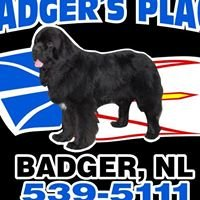 Badger's Place