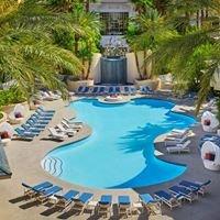 The Pool at Four Seasons Hotel Las Vegas