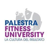 Palestra Fitness University Ssdarl