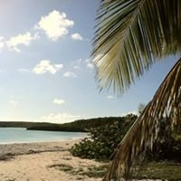 Vieques Island - Puerto Rico