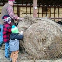 Chase Farm - Organic Dairy