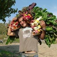 Gaia's Breath Farm