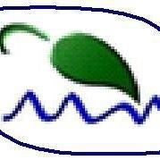 EverGreen Environmental Health & Safety, Inc.