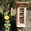 Little Free Library #15918