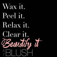 Blush Skin Care Studio