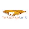 Yankaponga Lamb