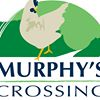 Murphys Crossing- free range eggs