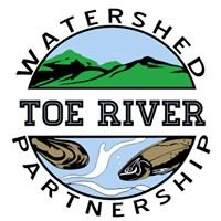 Toe River Watershed Partnership