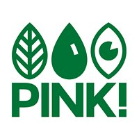 pinkpolitiek
