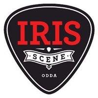 Iris Scene Odda