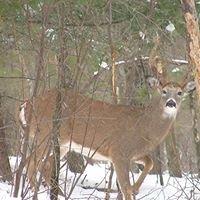 Pipeline Ridge Hunting Preserve