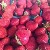 Guthrie Farm Produce