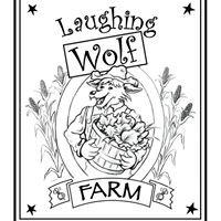 Laughing Wolf Farm