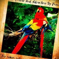 Costa Rica Travel And Adventure By Franco