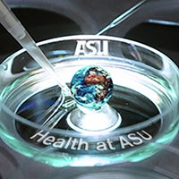 Health at ASU