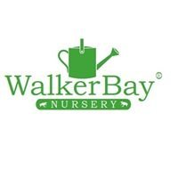 Walker Bay Nursery
