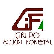 Grupo Acción Forestal (GAFMEX)