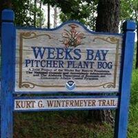 Weeks Bay / PITCHER Plant Bog