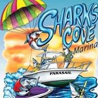 Shark's Cove Marina