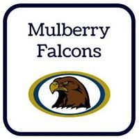 Mulberry Elementary School