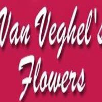 Van Veghel's Flowers