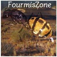 FourmisZone