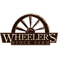 Wheeler's Stock Farm