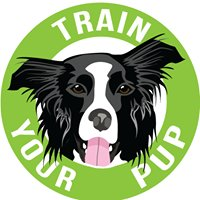 Train Your Pups Canine Enrichment Center