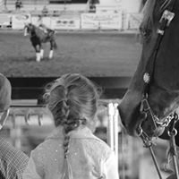 Mark Rafacz Reining Horses
