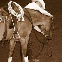 David Berry Performance Horses